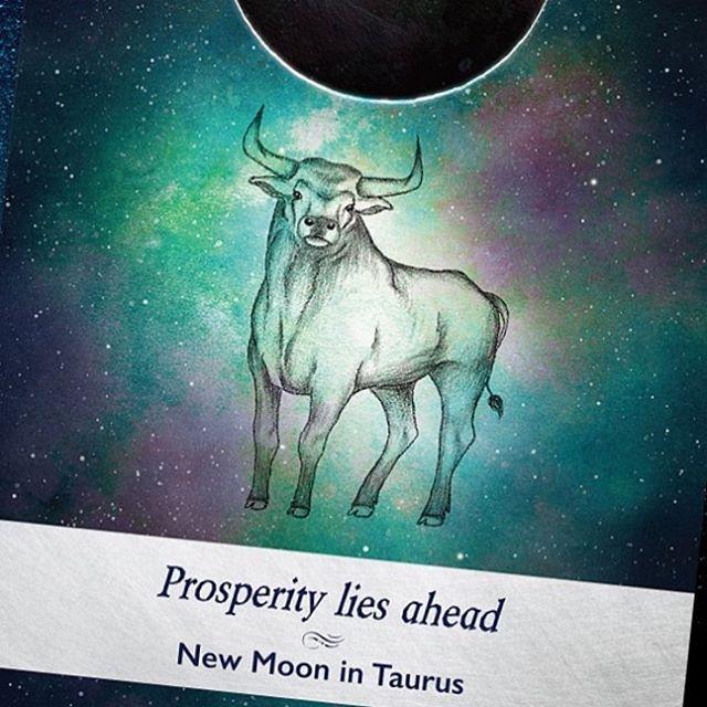 今日はコールドムーン。令和元年最後の満月  というわけで、月にあやかってムーンオロジーオラクルカードからワンオラクル。  牡牛座の新月  成功が待っている  あらゆる面で満たされる。そんなカード。  来年に向けて前を見るポジティブなパワーが出てます。